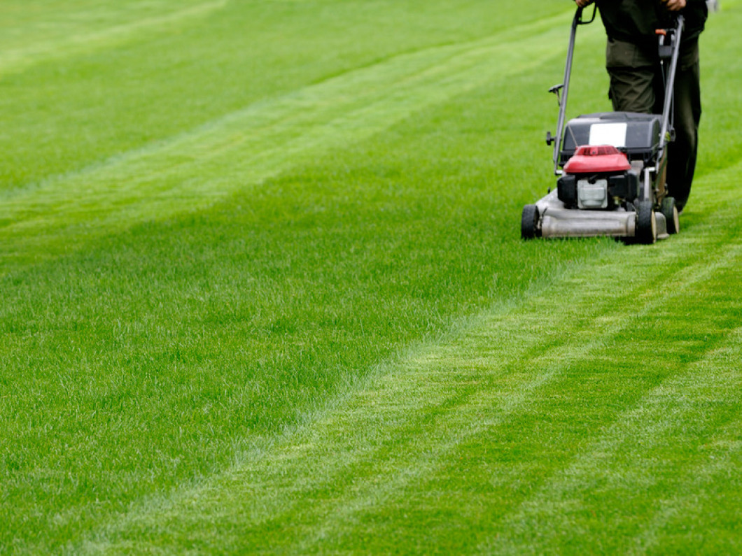 Schedule Routine Lawn Care Services in Land O' Lakes, FL